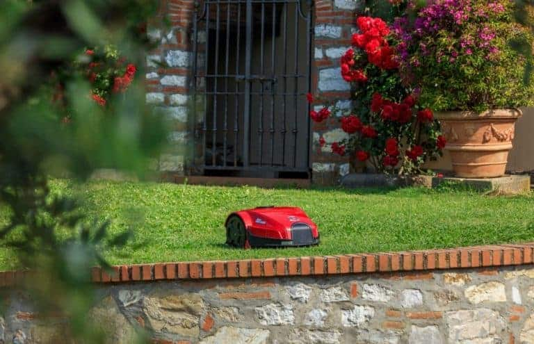 Ambrogio robot lawn mower, mowing in a garden