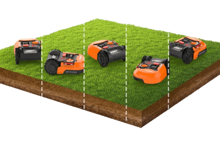 Different type of grass that a robot mower can mow