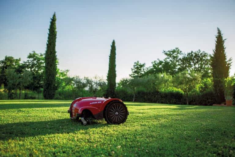 Robot mower in garden