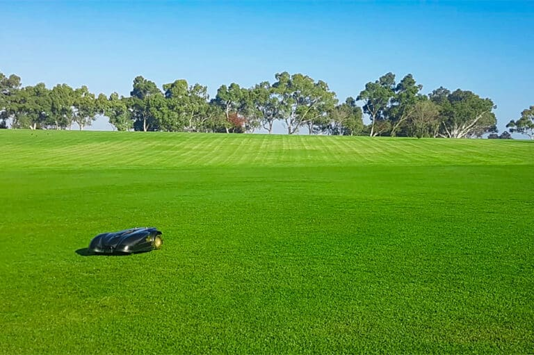 Ambrogio robot mower mowing a large area
